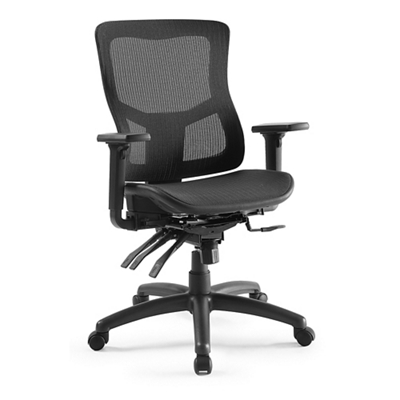 Ranier Ergonomic Mesh Task Chair