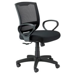 Task Chair with Mesh Back
