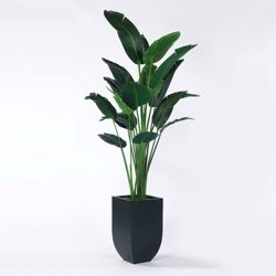Palm Tree in Metal Container - 8'H