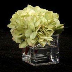 """Set of Six Hydrangeas in Vases - 6""""H"""