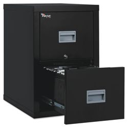 Two Drawer Fireproof Vertical File - Letter/Legal Size