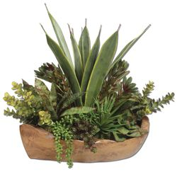 "Salar Succulents in Teak Bowl - 27""W x 22""H"