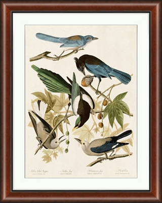 "Magpie and Friends - 28""W x 35""H"