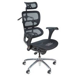 High Back Mesh Office Chairs Shop Ergonomic Fabric Seat Desk