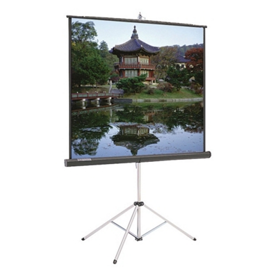 """70"""" W x 70"""" H Portable Square Projection Screen"""