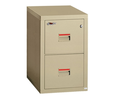 "Compact Two Drawer Vertical Fireproof File - 22""D"