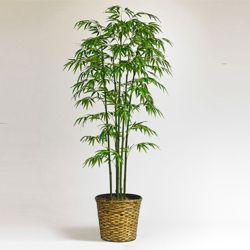 6 Foot Bamboo Tree with Woven Basket