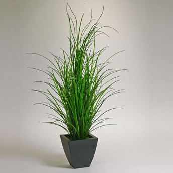 5 tall grass potted plant 87380 and more lifetime guarantee