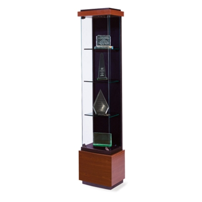 Tower Display Case
