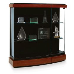 Wall-Mount Display Case