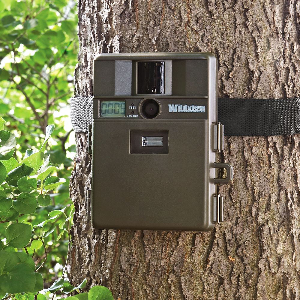 Digital Motion Detection Camera - National Geographic Store