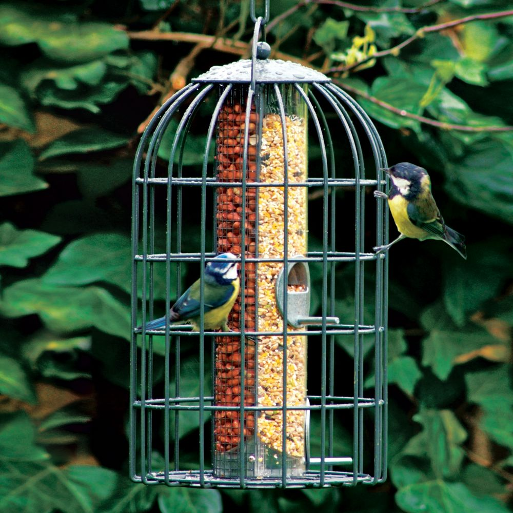 two in one bird feeder national geographic store