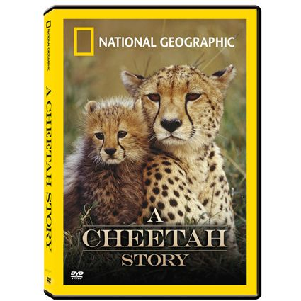 Review of Cheetah DVD Burner: - DVD Burning Software