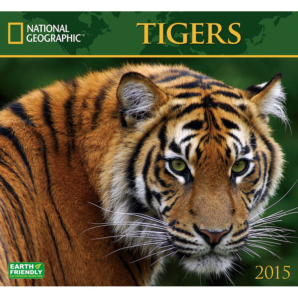 Photo Collection Tigers National Geographic