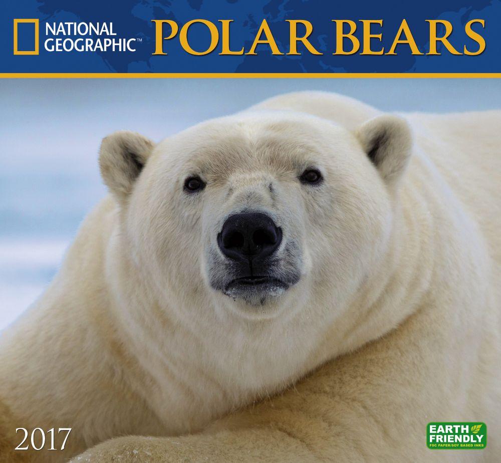 bears calendar