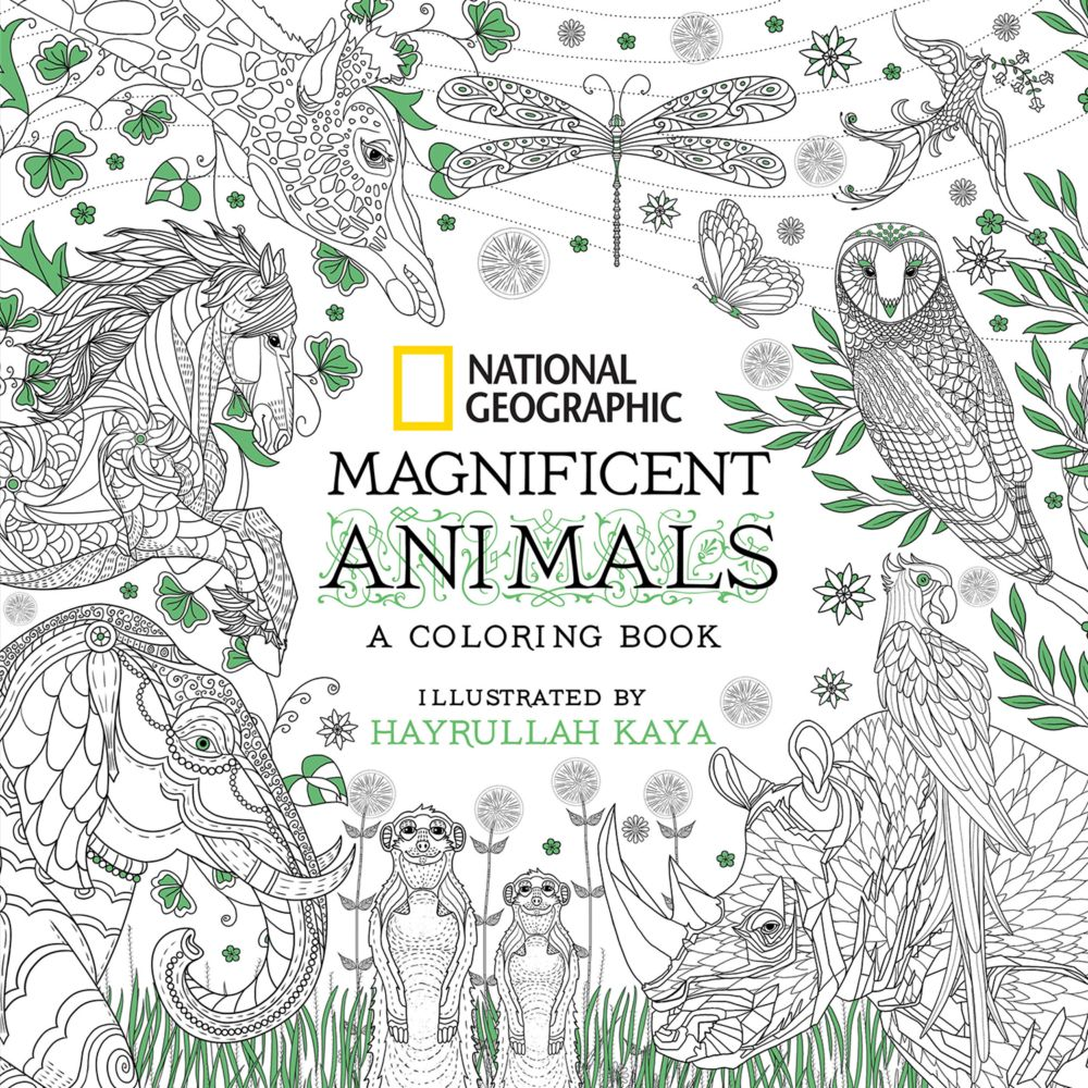 National Geographic Magnificent Animals National Geographic Store