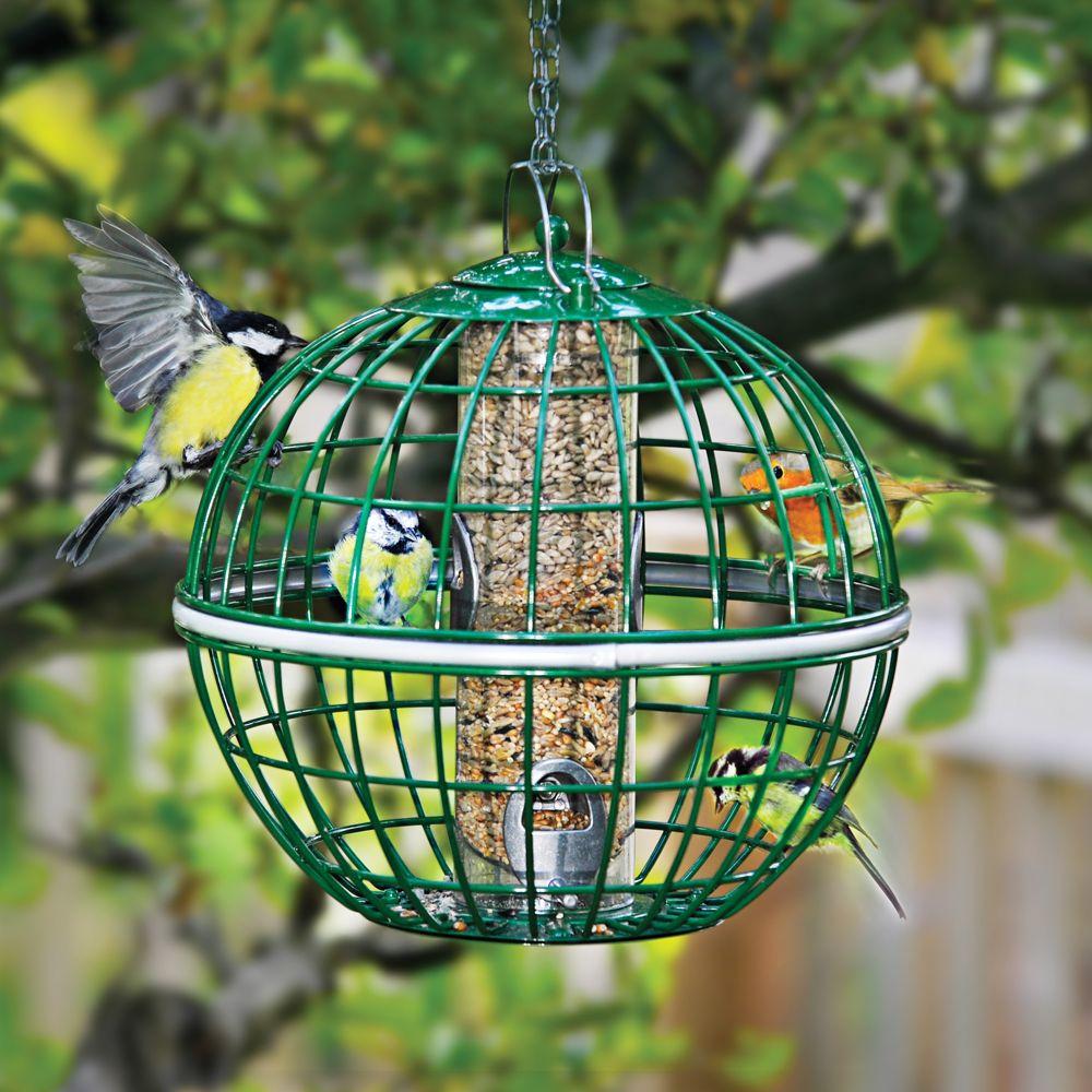 safe haven bird feeder national geographic store
