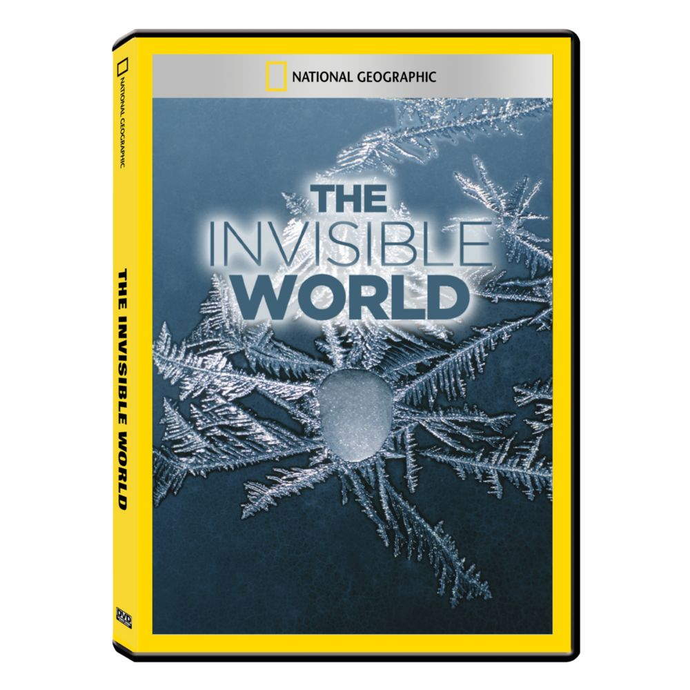 """an analysis of invisibility to the world of honor Within the chasm, gyges found a golden ring later he learned it was a ring of invisibility the story displays gyge's ability """"to do injustice with impunity he is able to do injustice without suffering any bad consequences"""" (finch 16."""