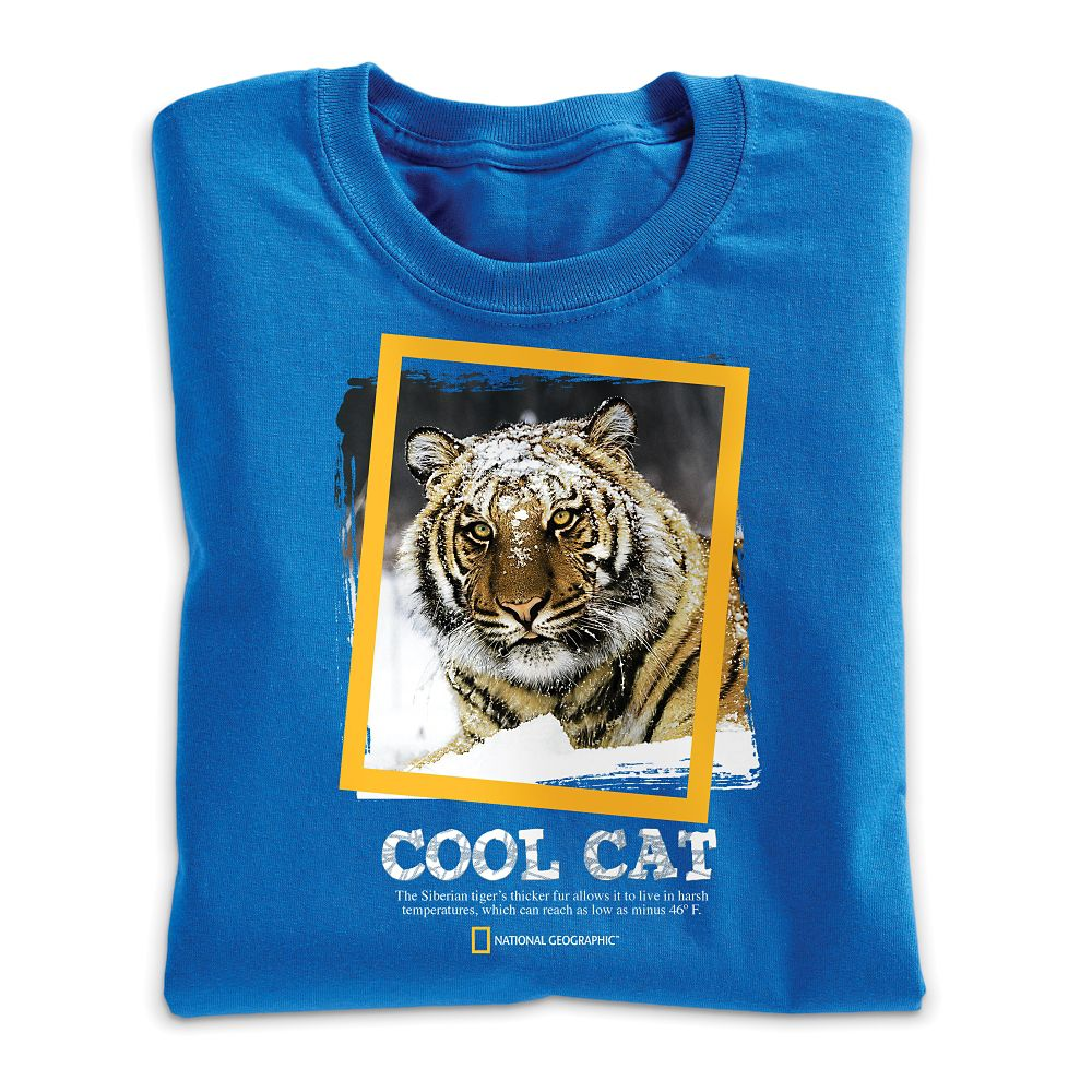 Kids Clothing & Animal T Shirts