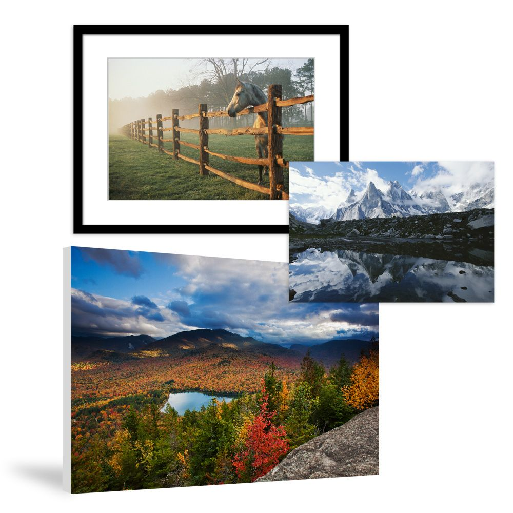 nature prints posters on national geographic art store