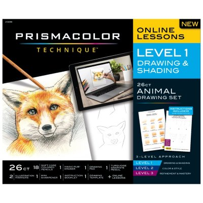 Technique Fox Drawing Art Set, Digital Lessons, Level 1