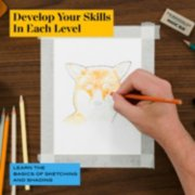 develop your skills in each level learn the basics of sketching and shading image number 2