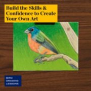 build the skills and confidence to create your own art in bird drawing lessons image number 4