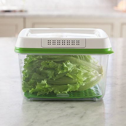 Rubbermaid FreshWorks produce storage container lettuce