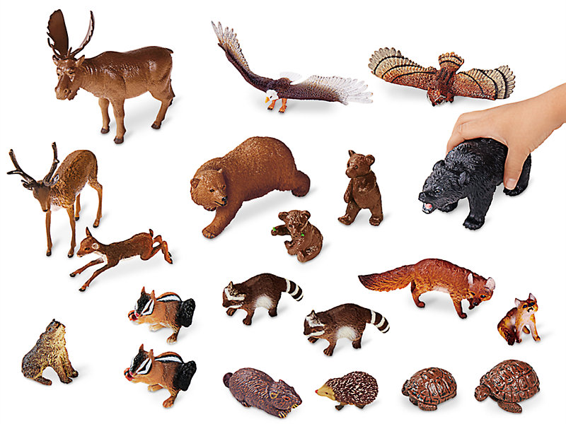 forest animal collection classic wild lakeshore learning wid window close fmt zoom move larger