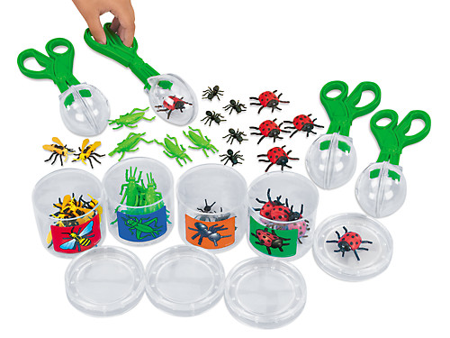 scoop a bug sorting kit at lakeshore learning