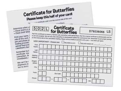 image regarding Lakeshore Learning Printable Coupons identify Coupon for 35 Further Caterpillars