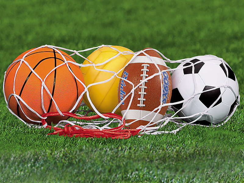Sport Balls - Complete Set at Lakeshore Learning