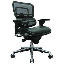 Ergohuman Mesh Back Leather Seat Mid Back Chair, CH50926