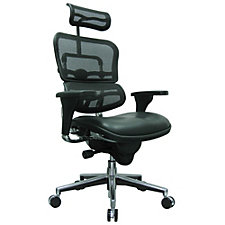 Ergohuman Mesh Back Leather Seat Executive Chair, CH50925
