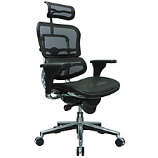 Ergohuman Mesh High Back Ergonomic Chair with Headrest, CH02907