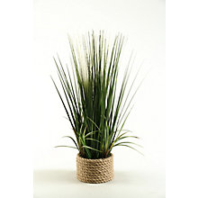 "30""H- Mixed Grasses, 8822773"