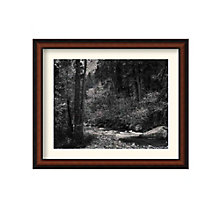 Framed Photography Print- Tenaya Creek by Ansel Adams, 8801442