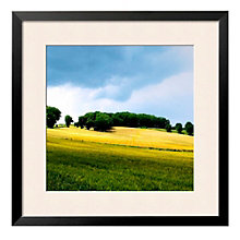 "Framed 27"" x 27"" Larrissingle Print by Colby Chester, ARS-10313"