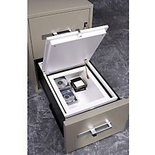"Data Insert for 31"" D File, PHS-MI100"