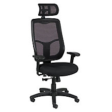 Apollo Mesh Back Fabric Seat Execuctive Chair with Headrest, 8813912