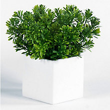 "10""H Artificial Foliage in Metal Cube, 8813502"