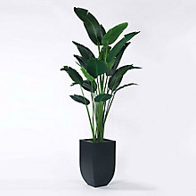 8' Palm Tree in Metal Container, 8813506