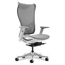 Raleigh High Back Mesh Chair, 8828281