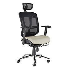Zerus Ergonomic Mesh Back Executive Chair With Headrest, 8823831