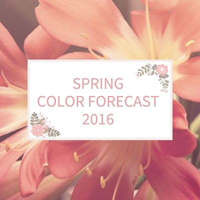 Spring Color Forecast