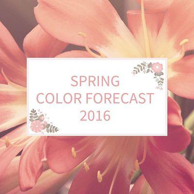 Spring Color Forecast