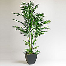 7'H Faux Areca Palm Tree, 8813518