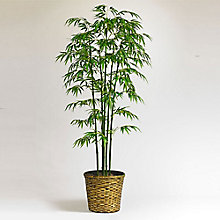 6'H Faux Bamboo Tree with Woven Basket, 8813523