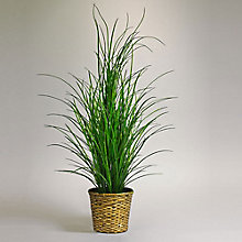 5'H Faux  Grass in Woven Basket, 8813530