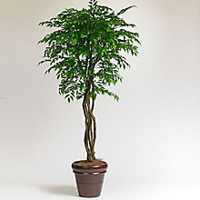 7'H Artificial Smilax Potted Tree, 8813510